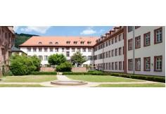 Foto Centro Universität Heidelberg, Dezernat Internationale Beziehungen México